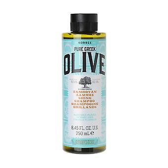 Olive - Shine shampoo 250 ml