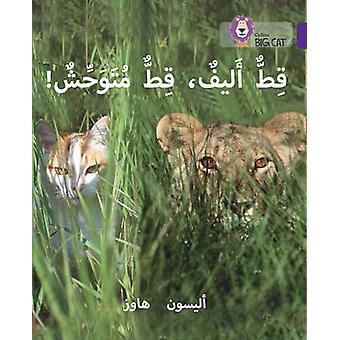 Tame Cat Wild Cat  Level 8 by Alison Hawes & Prepared for publication by Collins Big Cat