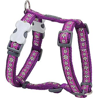Pet collars harnesses red dingo desinger dog harness  daisy chain purple 25mm x neck: 46-76cm / body 56-80cm l