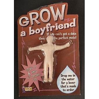 Bnov Grow A Boyfriend