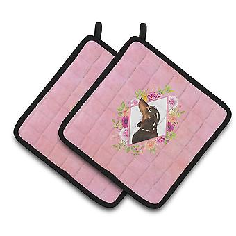 Black and Tan Dachshund Pink Flowers Pair of Pot Holders