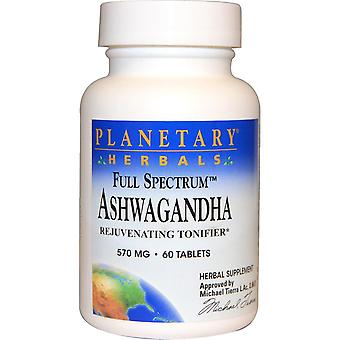 Planetary Herbals, Full Spectrum Ashwagandha, 570 mg, 60 Tablets