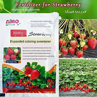 Strawberry Fertilizer Supplemental Plant Nutrition Hydroponics Expanded Fruit