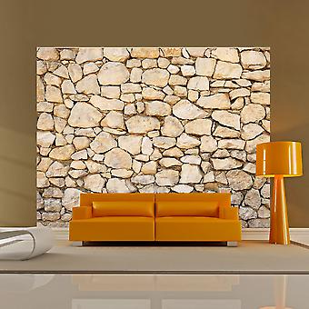 Fototapetti - visual illusion - stone