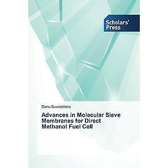 Avancerar i Molekylsikten membran för direkt metanol bränslecell av Suwatchara Danu