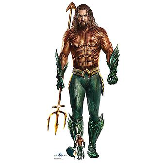 Aquaman Official DC Comics Live Action Style Cardboard Cutout