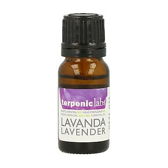 Lavender essential oil 10 ml of essential oil