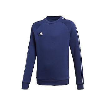 Adidas JR Core 18 CV3968 universal all year boy sweatshirts