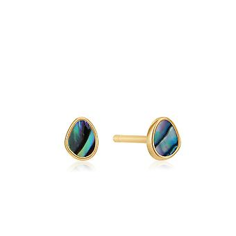 Ania Haie Shiny Gold Tidal Abalone Stud Earrings E027-04G