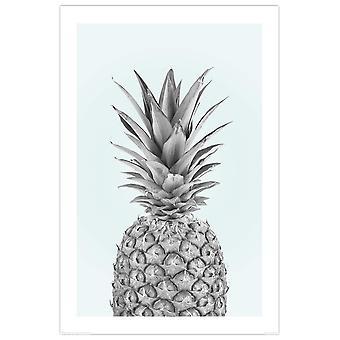 Pineapple poster pineapple