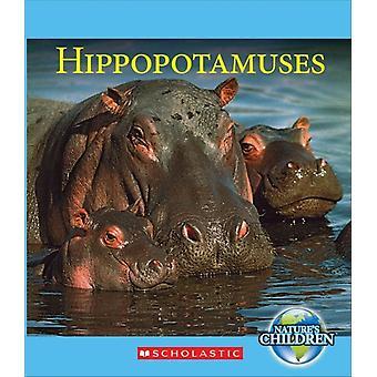 Hippopotamuses av Josh Gregory