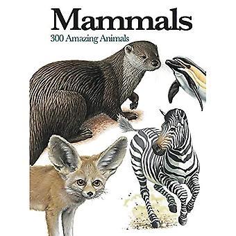 Zoogdieren: 300 verbazingwekkende dieren (Mini encyclopedie) (Mini encyclopedie)