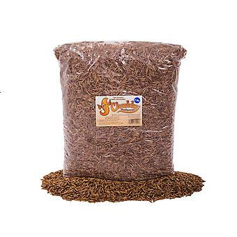 Wholesale dried mealworms - 1 pallet 315kg (25 x 12.6kg boxes)