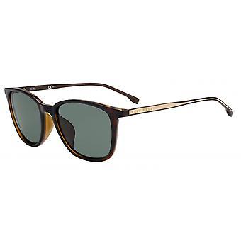 Sunglasses Men 1063/F/S086/QT Men's havanna/green