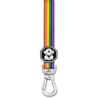 Pride-lippu | Talutushihna