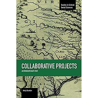 Collaborative Projects: An Interdisciplinary Study (Studies in Critical Social Sciences)