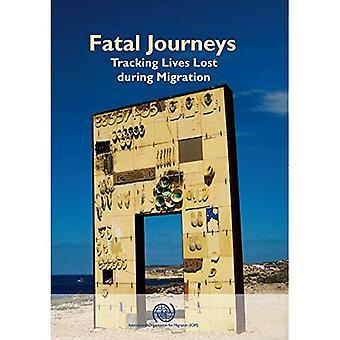 Fatale reizen: Bijhouden van leven verloren tijdens de migratie