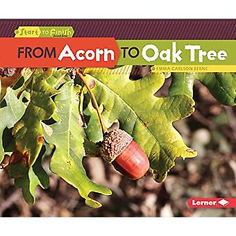 From Acorn to Oak Tree by Emma Carlson-Berne - 9781512456219 Book