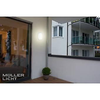 StarLicht Bulkhead LED natte ruimte licht (+ bewegingsmelder) LED (monochroom) Ingebouwde LED 8 W Koel wit Wit