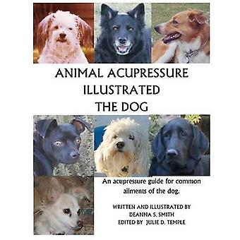 Animal Acupressure Illustrated The Dog by Deanna S Smith - 9781477586
