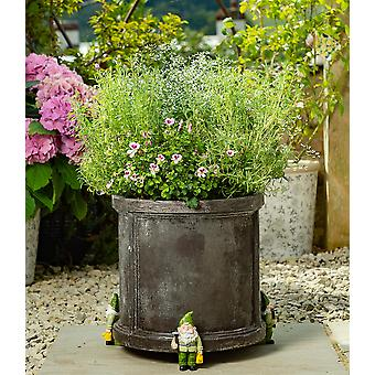 Potty Feet Standing Gnome Themed Plant Pot Feet with Watering Can - Set of 3