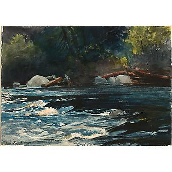 Winslow Homer - The Rapids Hudson River Adirondacks Poster Print Giclee