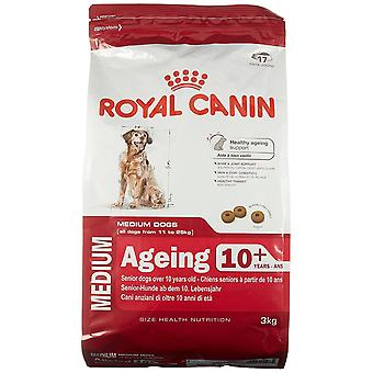 Royal Canin Dog Food Medium Ageing 10+ 3kg