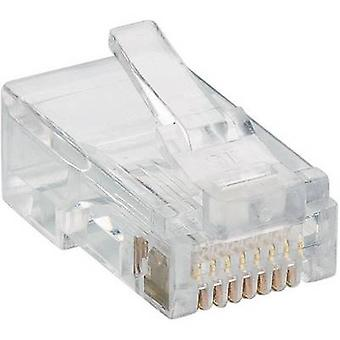 Lumberg P 129 modulkontakt 8p8c RJ45 kontakten, straight Transparent