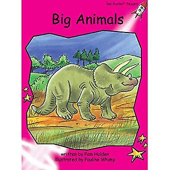 Stora djur