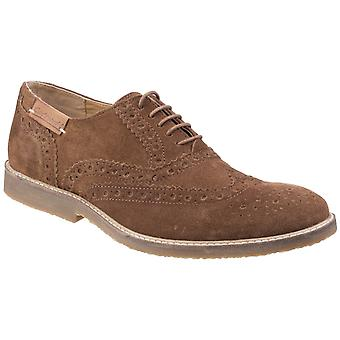 Chaussures Cotswold Mens Chatsworth Suede Wingtip