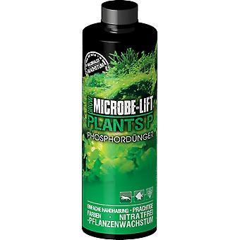 Microbe-Lift Plants P - Phosphorous (Fish , Plant Care , Pesticides)