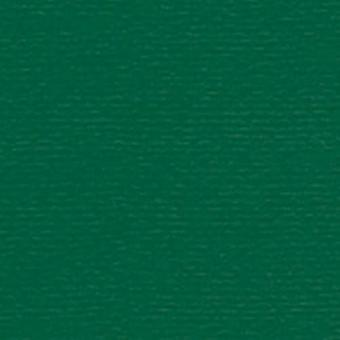 Papicolor 6X Cardboard 210X297mm-A4 Christmas Green