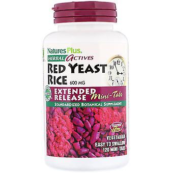 Nature's Plus, Activos herbales, Arroz de levadura roja, 600 mg, 120 Mini-Tabs