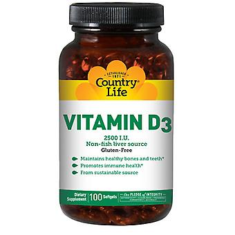 Country Life D3-vitamiini, 1000 IU, 100 Softgels