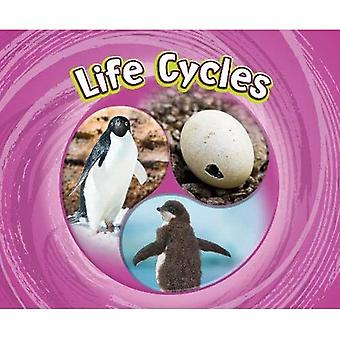 Life Cycles (Cycles of Nature)