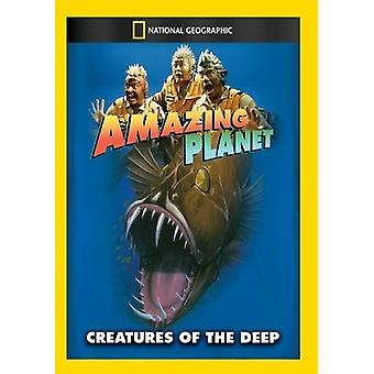 Amazing Planet: Kreaturen der Tiefe [DVD] USA importieren