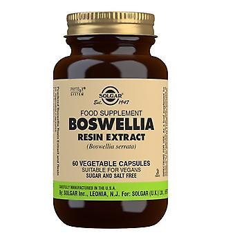Solgar Boswellia Resin Extract Vegicaps 60 (4114)