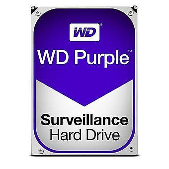 WD Purple övervakning hårddisk