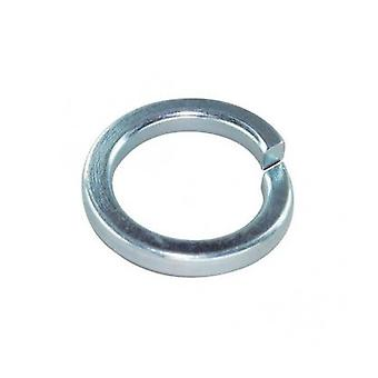M6 Spring Washer Acier inoxydable Din7980