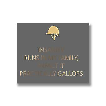 Hill Interiors Insanity Quote Wall Plaque