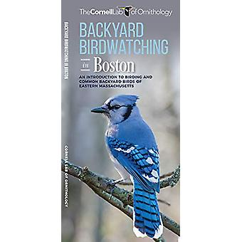 Backyard Birdwatching in Boston - An Introduction to Birding and Commo