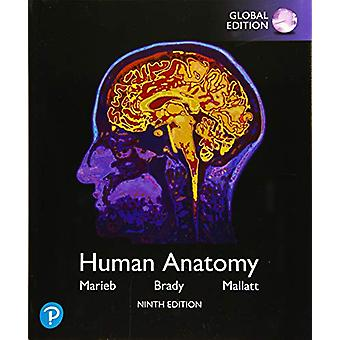 Human Anatomy - Global Edition by Elaine N. Marieb - 9781292314471 Bo