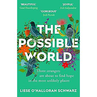 The Possible World by Liese O'Halloran Schwarz - 9781784757328 Book