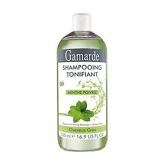 Toning Shampoo Mint (Fat) Bio 500 ml