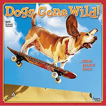 Avanti Dogs Gone Wild 2021 Square Calendar by Browntrout