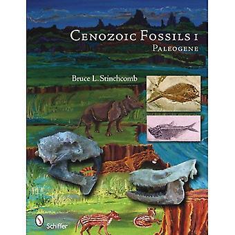 Cenozoic Fossils I: Paleogene