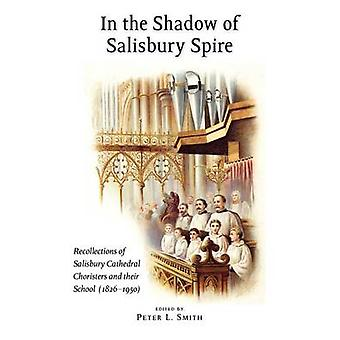 In the Shadow of Salisbury Spire by Smith & Peter L.
