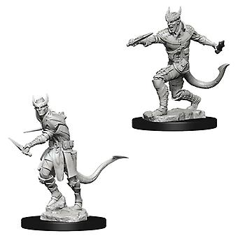Dungeons & Dragons Nolzur's Marvelous Omålade Miniatyrer (W5) Tiefling Male Rogue