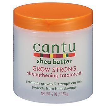 Cantu Renforcer le traitement Développer fort 6 oz