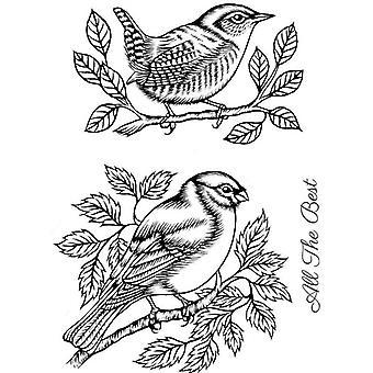 Sweet Dixie Stamp Set - Bullfinch And Wren